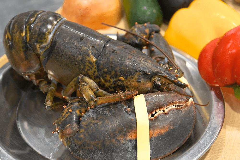 オマール海老にカダイフを纏わせてロティ カラフル野菜の煮込みと、甲殻類のエッセンス【10人前】(消費税込)