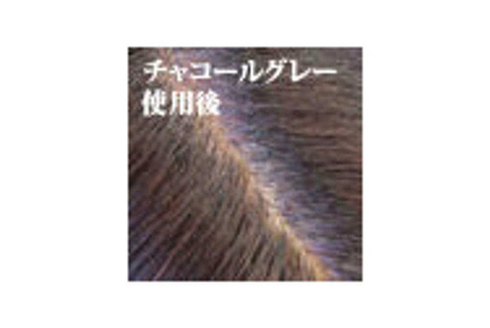 BOTANICOAT 自然派リタッチカラー【all the time】 02チャコールグレー