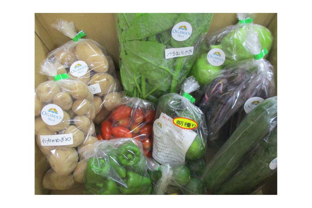 OGAWA′N農家のこだわり野菜詰合せセット